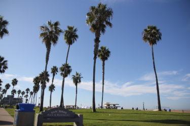 【サンディエゴ観光】ミッションベイ・パシフィックビーチの見どころと周辺ホテルを紹介