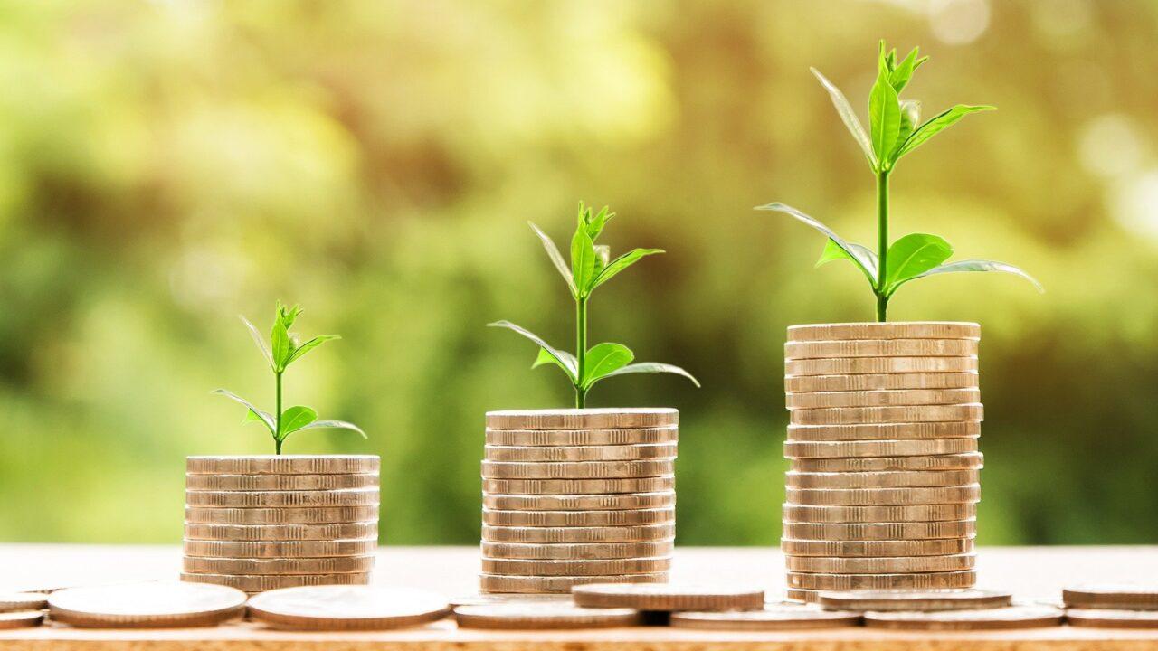 初心者投資1年の利益